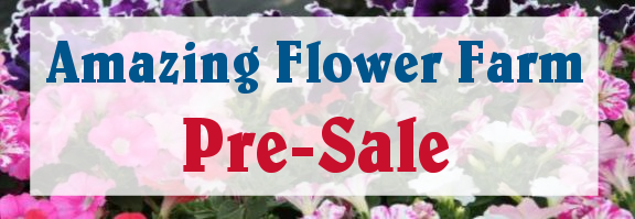 Amazing Flower Farm Pre-season,  Pre-Buy SALE!