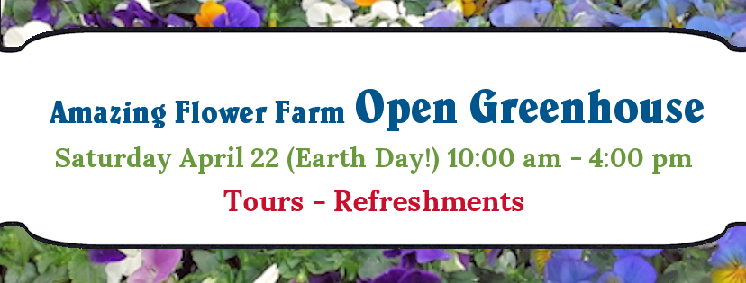 Amazing Flower Farm Open House 2017