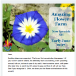 Early June Newsletter
