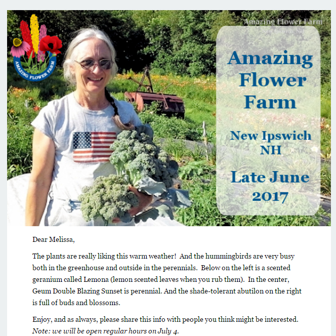 Amazing Flower Farm Newsletter Late June 2017