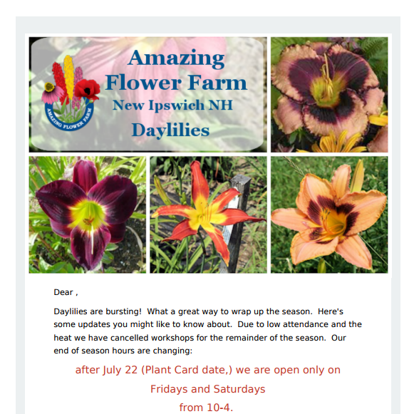 Amazing Flower Farm Newsletter Late July 2017