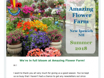 Amazing Flower Farm Newsletter Summer 2018